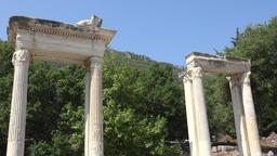 Turkey Ephesus Ephesos Efes columns of antique Greek ruin in Curetes Street GIF