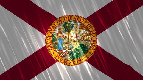Florida State Loopable Flag Animation
