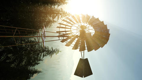 Typical Old Windmill turbine in forest. vertical format 영상물