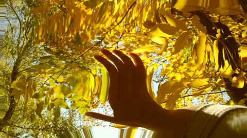 POV of hand of man who moves it in air, through fingers through rays of sun Footage
