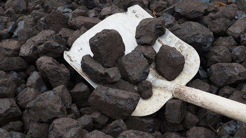 Shovel and coal. A pile of brown coal with a shovel, lignite storage Live Action