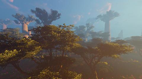 Prairie and Baobab landscape Animation