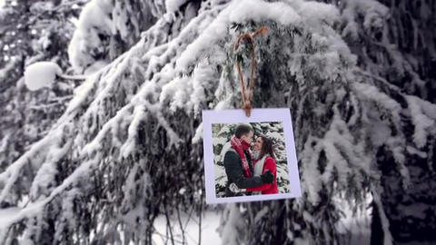 Photos in the winter forest After Effects Template