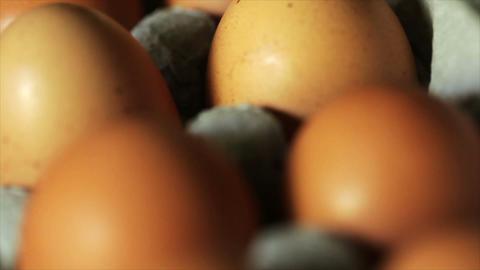 tilt to fresh eggs Footage