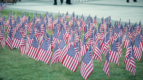 american flags during a ceremony Footage