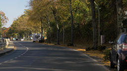 Vehicle Shot of Autumn Road in City Footage