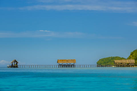 Long Wooden Pier on a Tropical Island Fotografía