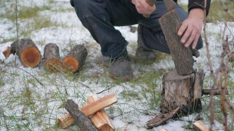 Lumberjack chopping wood 영상물