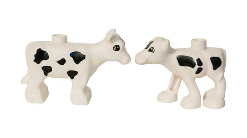 two cows plastic toys フォト