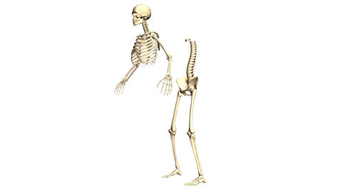 Animated Skeleton Static on Black background and Static... Stock Video Footage