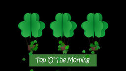 Happy St Patricks day animation with ' top o the morning text' Animation