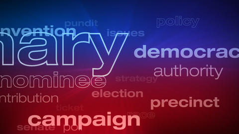 Political and Election Words Loop Animation