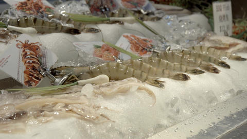 Close-up of the shrimp that was sold at Chinatown in Singapore ライブ動画