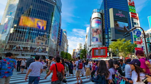 Many people at the pedestrian crossing time lapse right panning ライブ動画