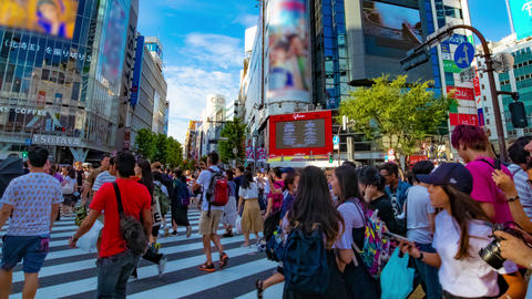 Many people at the pedestrian crossing time lapse zoom out ライブ動画