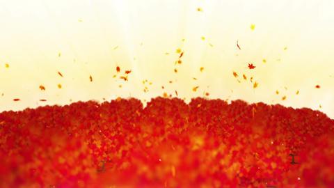 Autumn forest landscape illustration, Abstract nature background, Maple Leaf Animation