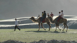 Tourists ride a camel sand dunes,Sumur,India Footage