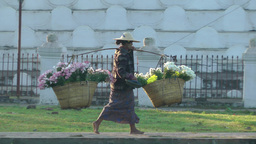 Flower seller walks past temple,Katha,Burma Footage