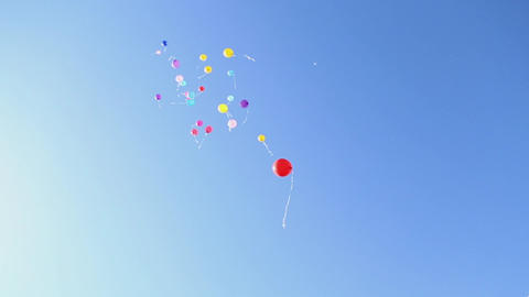 Balloons fly into the sky Footage