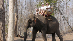 Tourists ride an elephant,Tad Lo,Laos Archivo