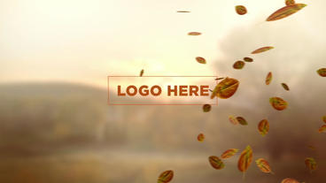 Leaves logo reveal After Effects Project