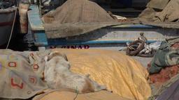 Turkey Aegean coast Aydin Province Kusadasi dog sleeps on fishing boat GIF
