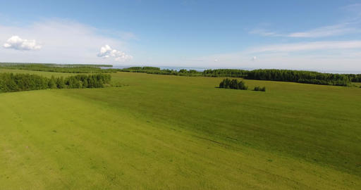 Smooth field summer day Stock Video Footage