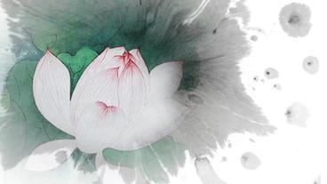 Lotus wLeaves v2 F water colour ink splash Plantilla de After Effects