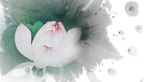 Lotus wLeaves v2 F water colour ink splash After Effects Template