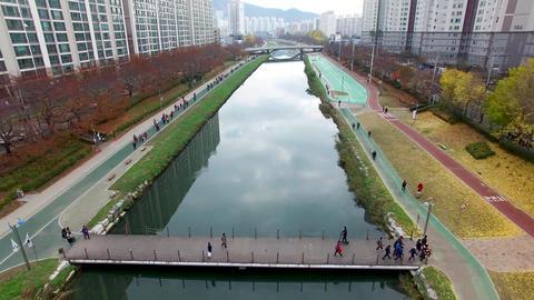 Autumn of Oncheoncheon Citizen Park, Busan, South Korea, Asia Live Action