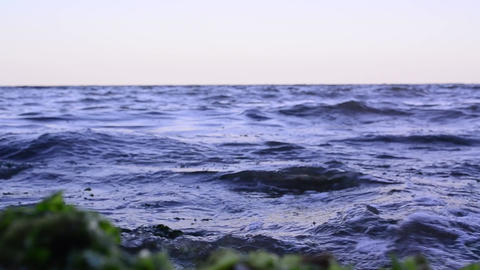 Blue waves crashing to shore is full of green algae 01 Footage