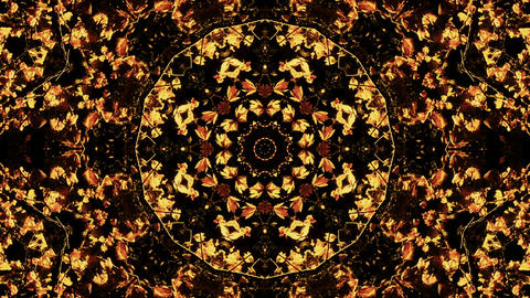 Nature kaleidoscope - Nature Kaleido 07 HD Stock Video Footage