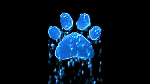 Liquid symbol paw appears with water droplets. Then dissolves with drops of Animation