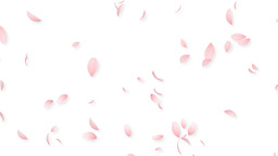 Sakura Animation