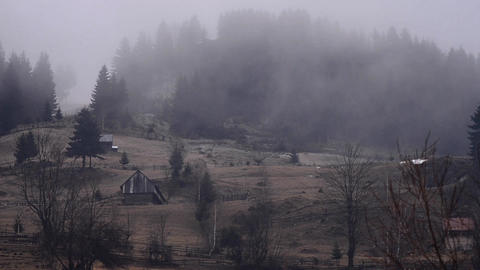 Fog passing over the dark forest on a hillside where there are several houses 01 Live Action