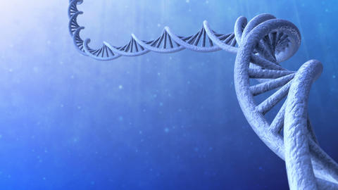 3d render of DNA helix structure. Loopable Animation