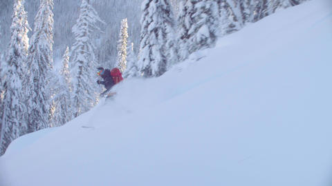 Skitour in Siberia. A man riding down the hill in a snowy forest Live Action