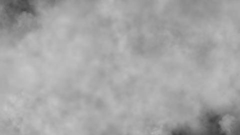 Fog, loop Stock Video Footage