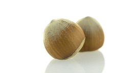 Tasty hazelnuts Stock Video Footage
