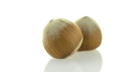 Tasty hazelnuts Footage
