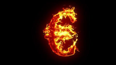 Burning euro sign Animation