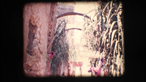 Vintage 8mm. Narrow alley Stock Video Footage
