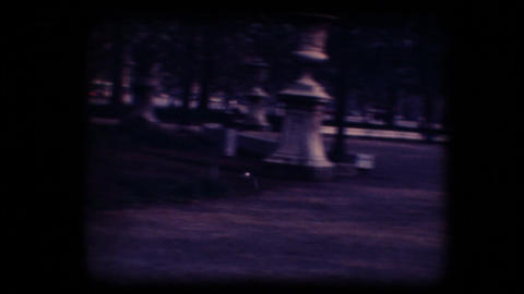 Vintage 8mm. Pigeon flying away Stock Video Footage