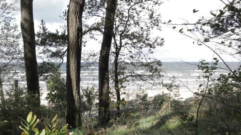 Squally wind on the shore of the Baltic sea Stock Video Footage