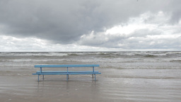 Bench on the Baltic sea shore. Autumn landscape Footage