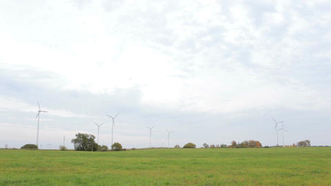 Many wind turbines in the field Stock Video Footage