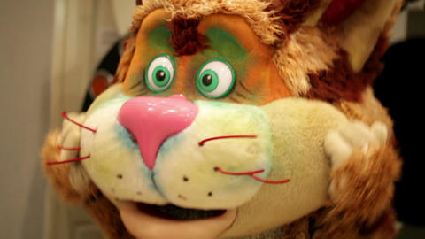 Actor in a cat's costume. Closeup Footage