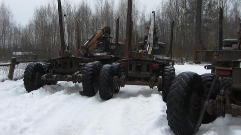 Timber Trucks