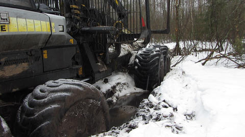Timber Trucks 2