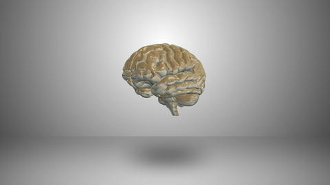 Brain motione Footage